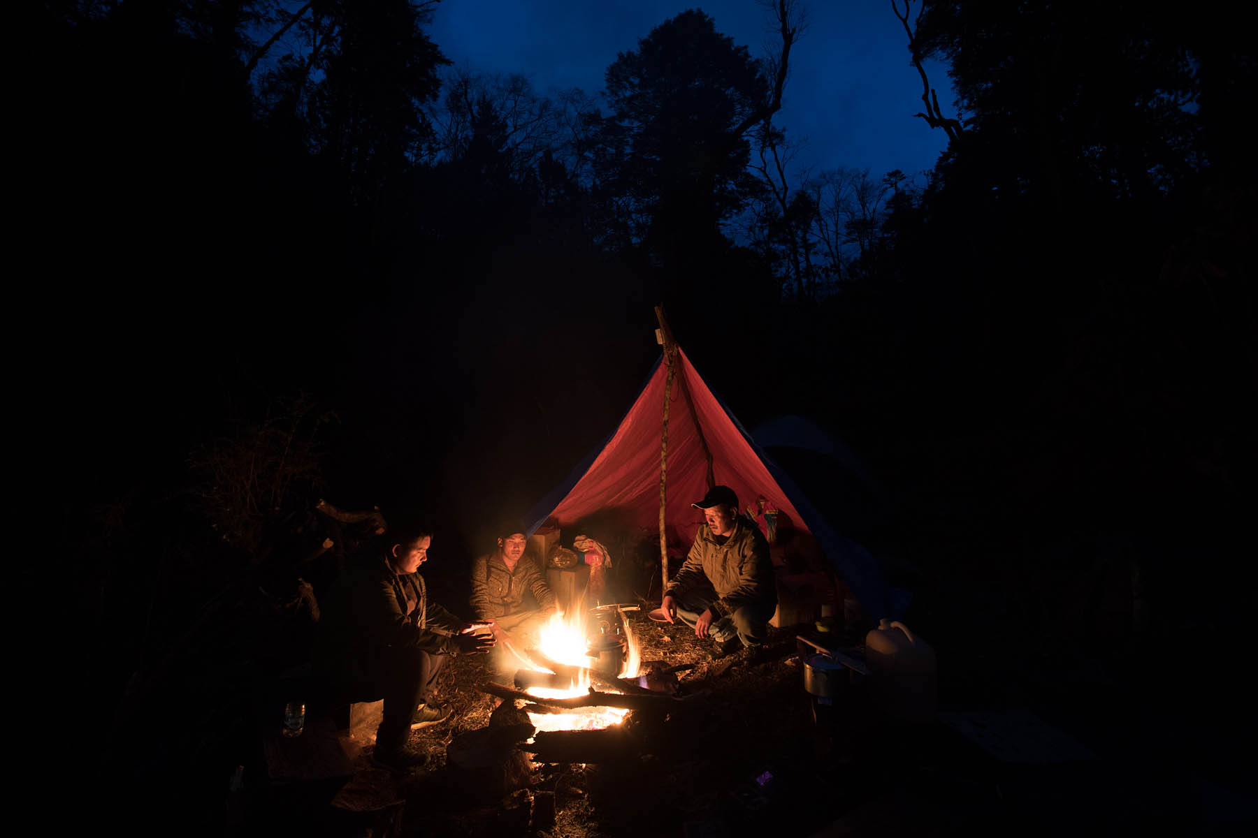 WWF staff and forest rangers are camping in a wildlife corridors.
